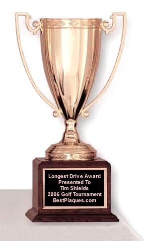 Metal Cup Award