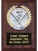Sports Plaques Small