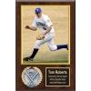 8X10 Memory Mate Economy Plaques Walnut Style - 12X15 Plaque Fits a 8X10 Photo & Sports Emblem