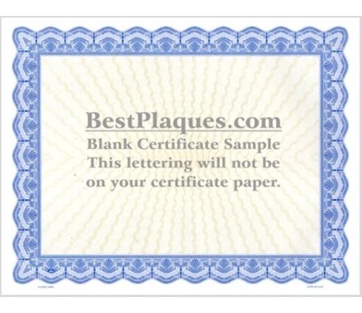 8.5 x 11 Certificate Paper - Blue 100 Sheets per Pack