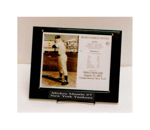 8X10 Deluxe Photo Plaque Kit Holds Horizontal or Vertical Photo - 10.5X13 Plaque Fits an 8X10 Photo 2 Line Engraved Nameplate